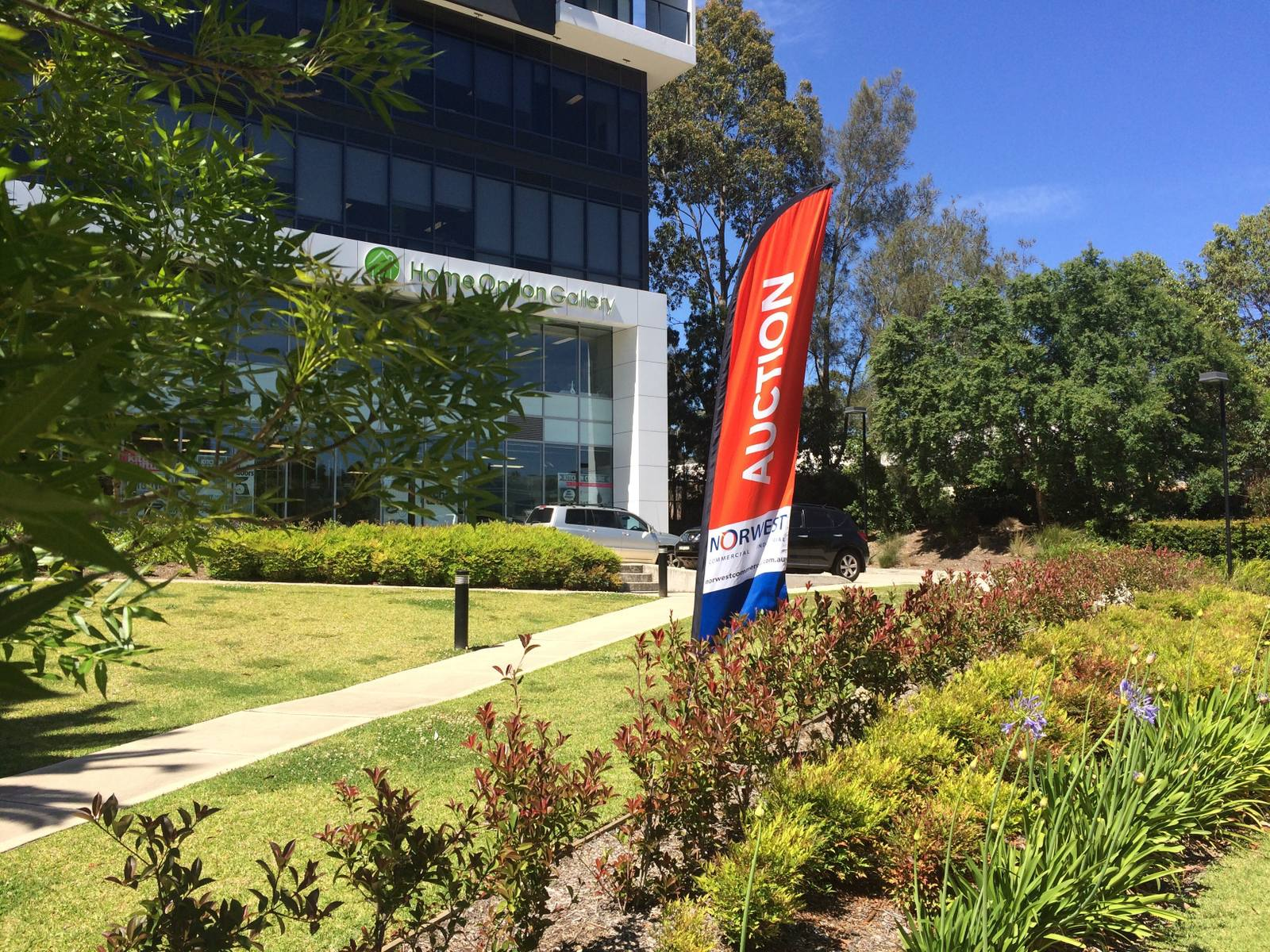 NORWEST COMMERCIAL & COUTTS ACHIEVE BUMPER RESULTS AT SUMMER AUCTION